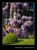 Wightwick Manor #22