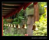 Biddulph Grange #12