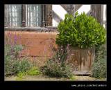 Wightwick Manor #34