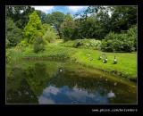 Wightwick Manor #42