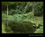 Lily Pond Reflections, Portmeirion 2007