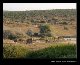Watering Hole, Addo Elephant Park