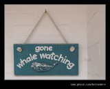 Gone Whale Watching