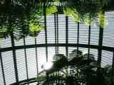 Lines and Light inside the wooden Arboreum