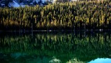 Reflections - Lake Tenaya