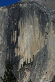 Face on the Face of Half Dome