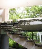 Inside Norriega Mansion Ruins