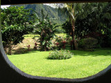 Room with a View - Elle Valle