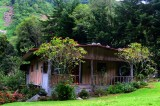 Panamanian Home and Gardens in the Highlands