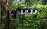 Green and Friendly PANAMA