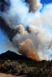 The Pine Fire - San Diego, California
