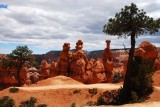 Nice Hoodoo Family Under a Tree
