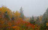 Vermont Scenes Fall '07