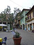 The village of Stresa