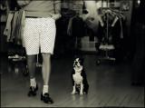 dog_contax.jpg