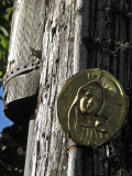 Our lady of the telephone pole