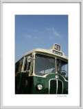 100 years of Paris bus 5