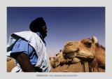 Mauritania 26