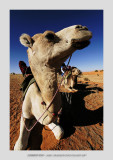 Mauritania 2