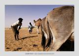 Mauritania 71