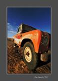Desert old timer