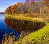 Jones Creek 8781
