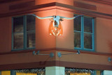 Buckhorn Longhorn 44068