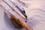 Driftwood 45495