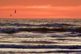 Near Sunrise 20061205