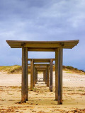 Picnic Shelters 46053