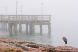 Pier & Heron In Fog 46209