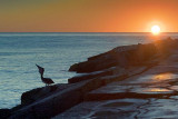 South Jetty Sunrise 20061227