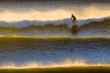 Sunrise Surfer 48898