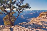 Grand Canyon 30143
