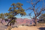 Grand Canyon 30040