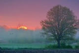 Misty Sunrise 20070518