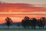 Sunrise Clouds 60801