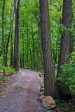 Morris Island Trail 62251