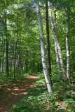 Morris Island Trail 62250