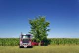 Truck, Tree, & Cornfield 20070723
