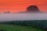 Dawn Mist 20070806