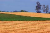 Rolling Fields 20070808