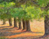Pine Row 65087 Art