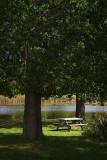 Riverside Picnic Table 66565