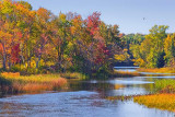 Autumn River 20070925