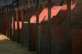 Empty Horse Stalls 66969