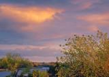 Near Sunset 67881