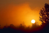 Brooding Sunrise 67939