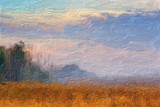 Hazy Field 68373 Art