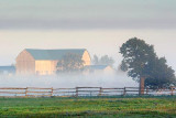 Barn In Early Fog 68141
